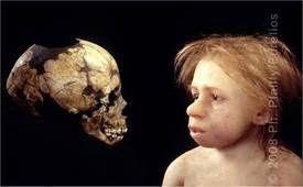 neandertal-enfant.jpg