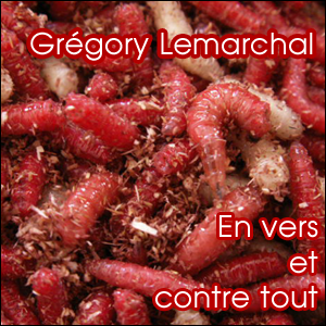 gregory-lemarchal-copie-2.png
