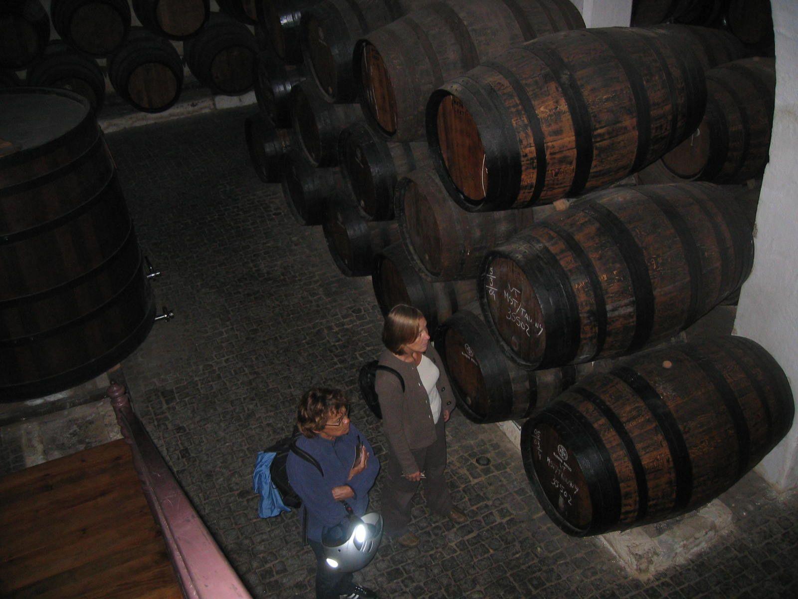 2009 - Portugal - 2
