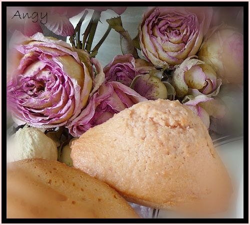 madeleines roses ( poudre de biscuits roses)