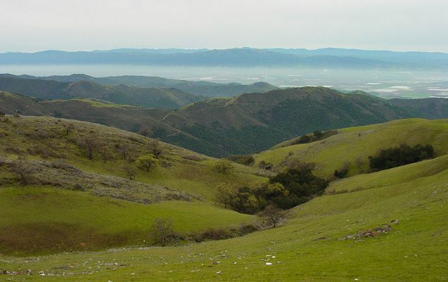 Salinas Valley - 3