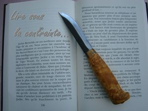 Lire-sous-la-contrainte.jpg