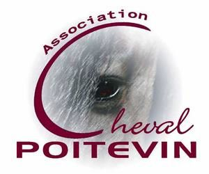 Association du cheval Poitevin//Logo