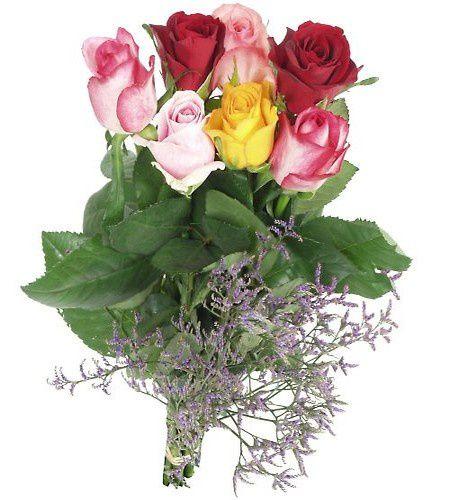 fleurs_tige.jpg