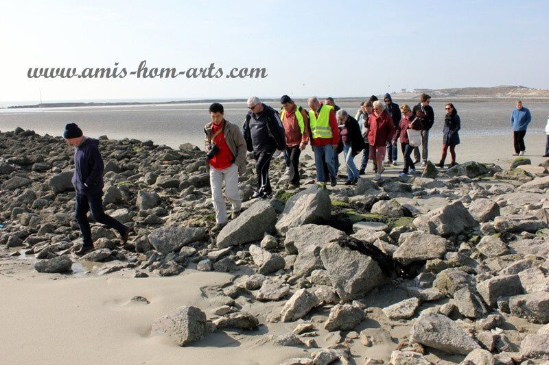 MARCHE-BAIE-AUTHIE-08.03.14-044.jpg