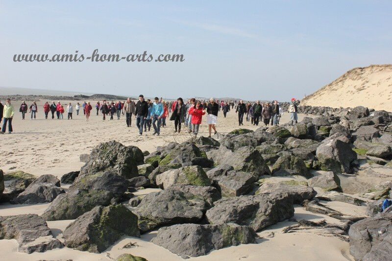 MARCHE-BAIE-AUTHIE-08.03.14-046.jpg