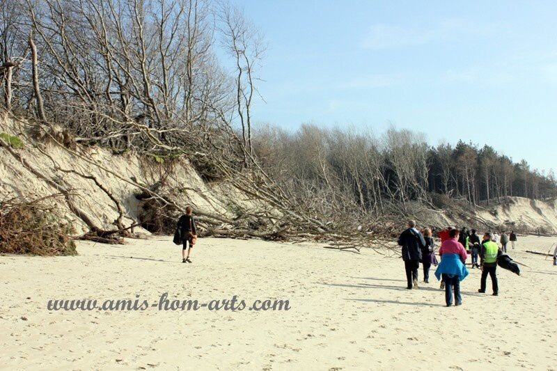 MARCHE-BAIE-AUTHIE-08.03.14-050.jpg