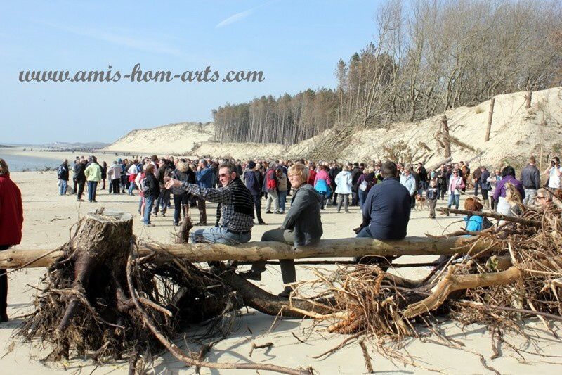 MARCHE-BAIE-AUTHIE-08.03.14-058.jpg