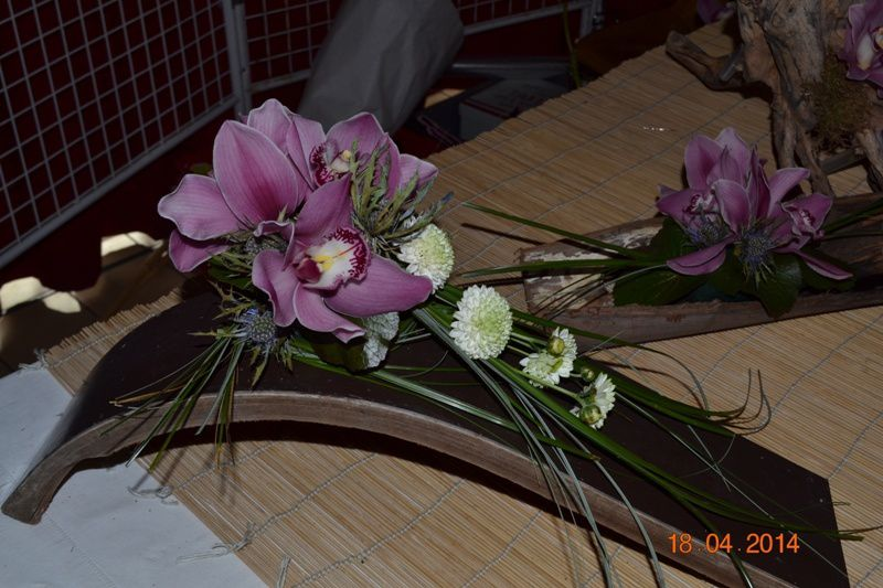 ORCHIDEES-MERLIMONT 0027