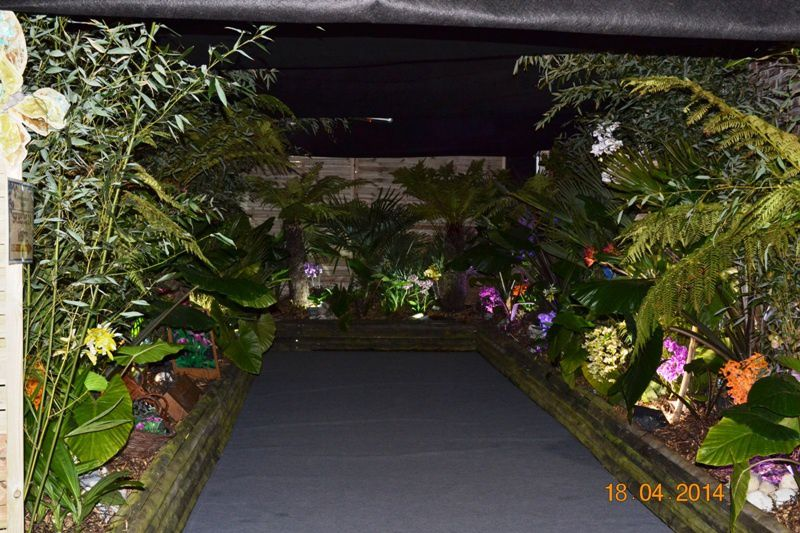 ORCHIDEES-MERLIMONT 0033
