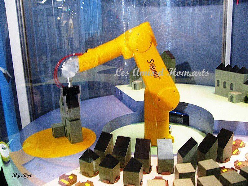 PARIS 07.02.10 022
