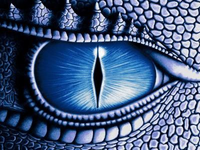 dragon oeil