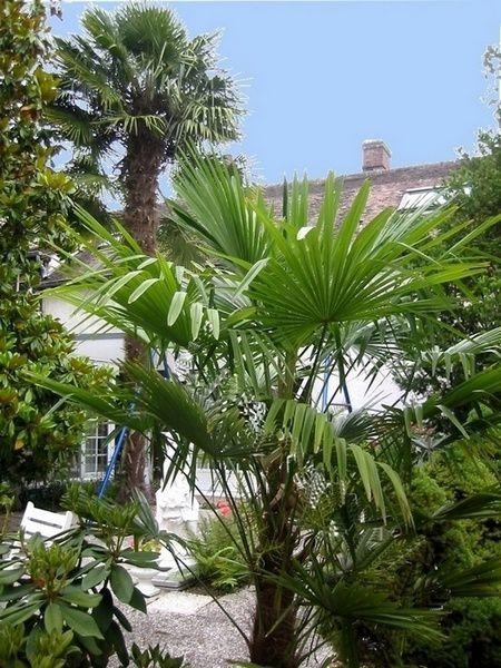 Les coteaux d ezy sur eure raret scientifique paysagiste for Entretien jardin 28