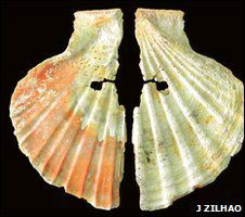 coquillage traces pigments neandertal