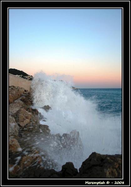 Une petite vie se résume, au travers de regards fugaces, dans cet album : une vie azuréenne de 3 années. Ces photos ont été prises de Monaco à Antibes, du Mercantour au Loup, entre Mars et Juillet 2008.