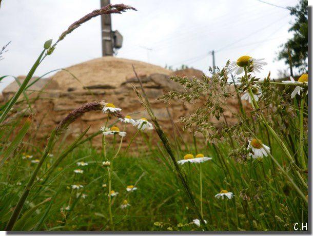 Four-Chopinais-Juin-2012-ciel.jpg