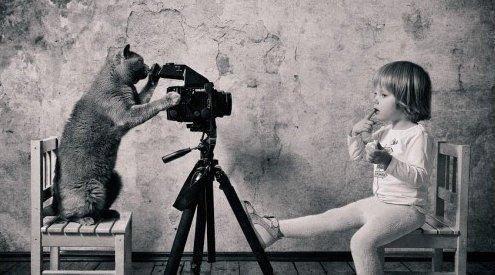Populaire C'est qui le photographe ? - Chatterie Cuore di léone, chats  WW48