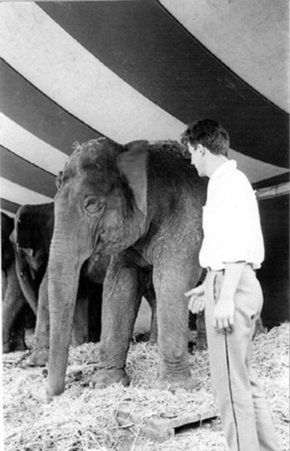 Blaine interview-with-an-elephant--1962