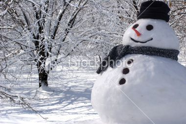 istockphoto_6284593-perfect-snowman-at-home.jpg