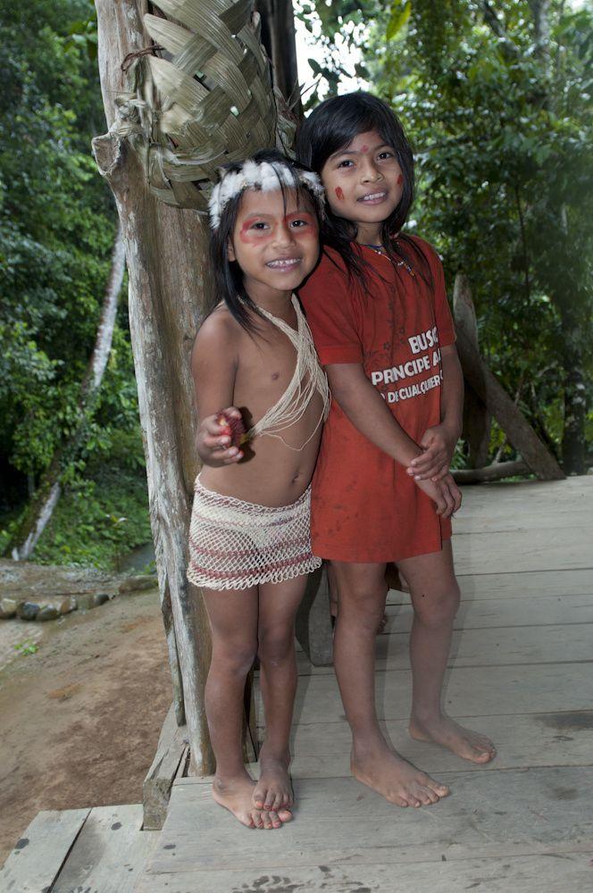 Forêt amazonienne Equateur Hoaorani