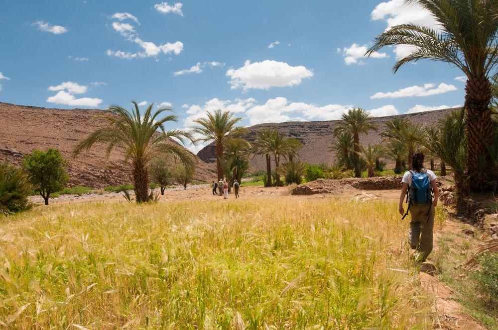 Djebel Sarhro Etape 4 : Ighazoun Handour