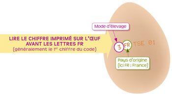 PMAFcode-copie-1.jpg