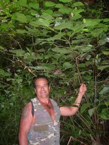 Tahiti-Iti-Aivaro-ao-t-2008-Peva-LEVY-Pi