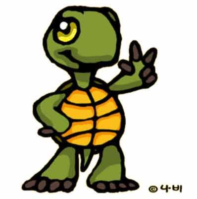 tortue cool