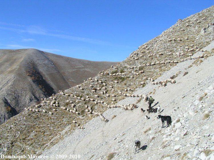 Alpes Maritimes 2009 daluis81
