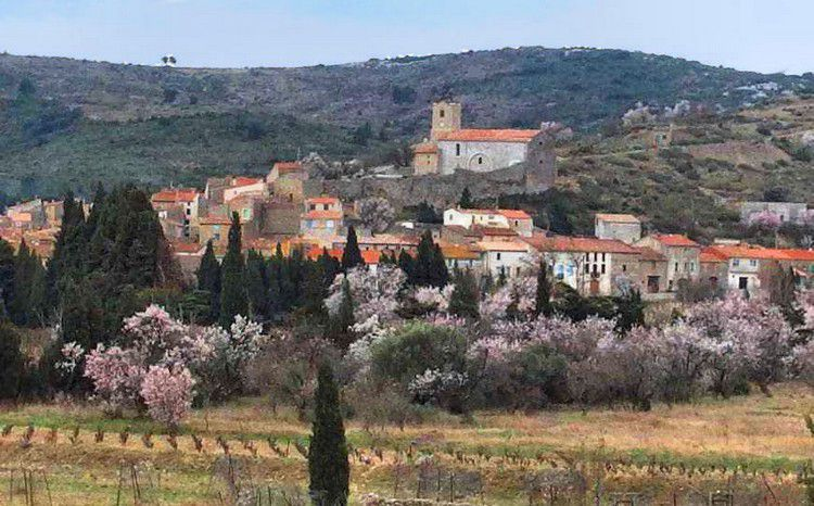 Chateau d'Aguilar 102 village de Paziols