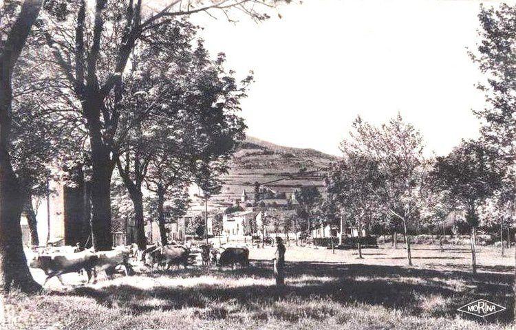 Espezel 224 en 1948