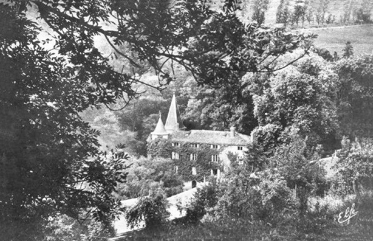 Niort de Sault ancien 010 le chateau en 1960