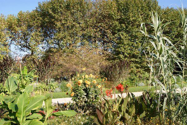 Le jardin des plantes paris le billet de michel for Au jardin des plantes chambery