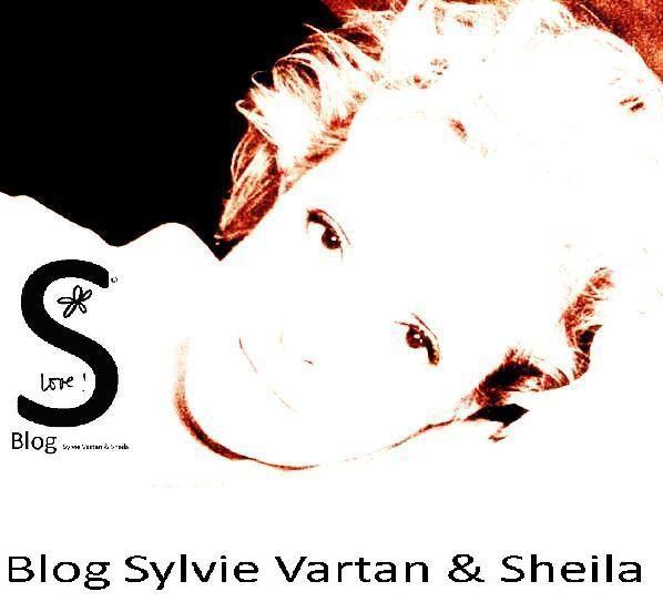 Portfolio19-600x601-1-.jpg
