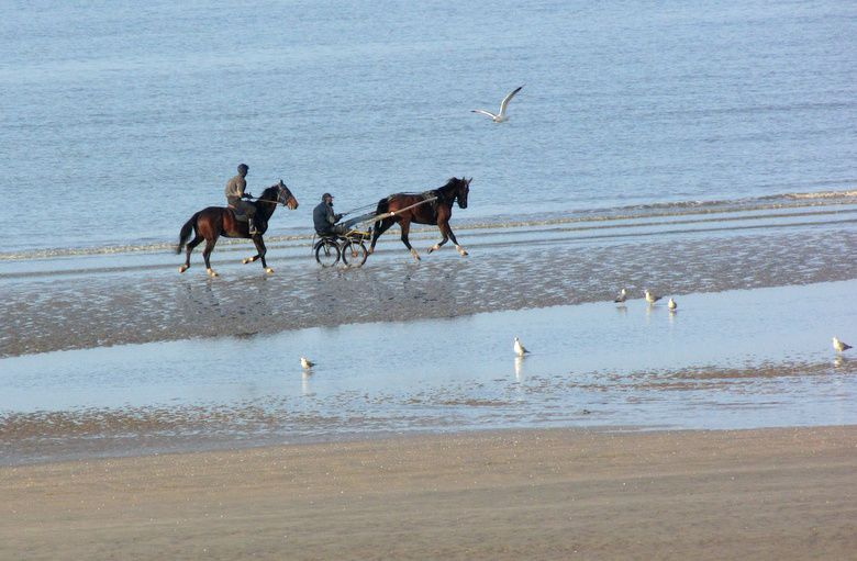 Cabourg-5747.JPG