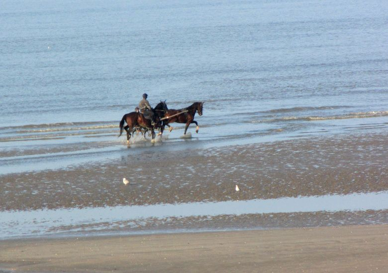 Cabourg-5748.JPG