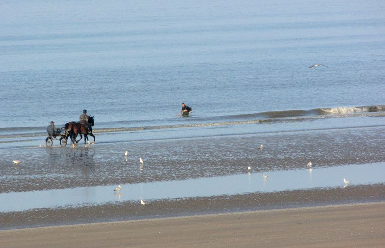 Cabourg-5749.JPG
