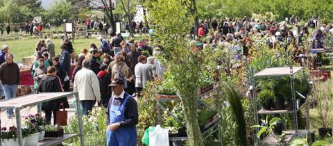 fete-des-fleurs-et-des-plantes-a-la-roche-de-glun-dimanche.jpg