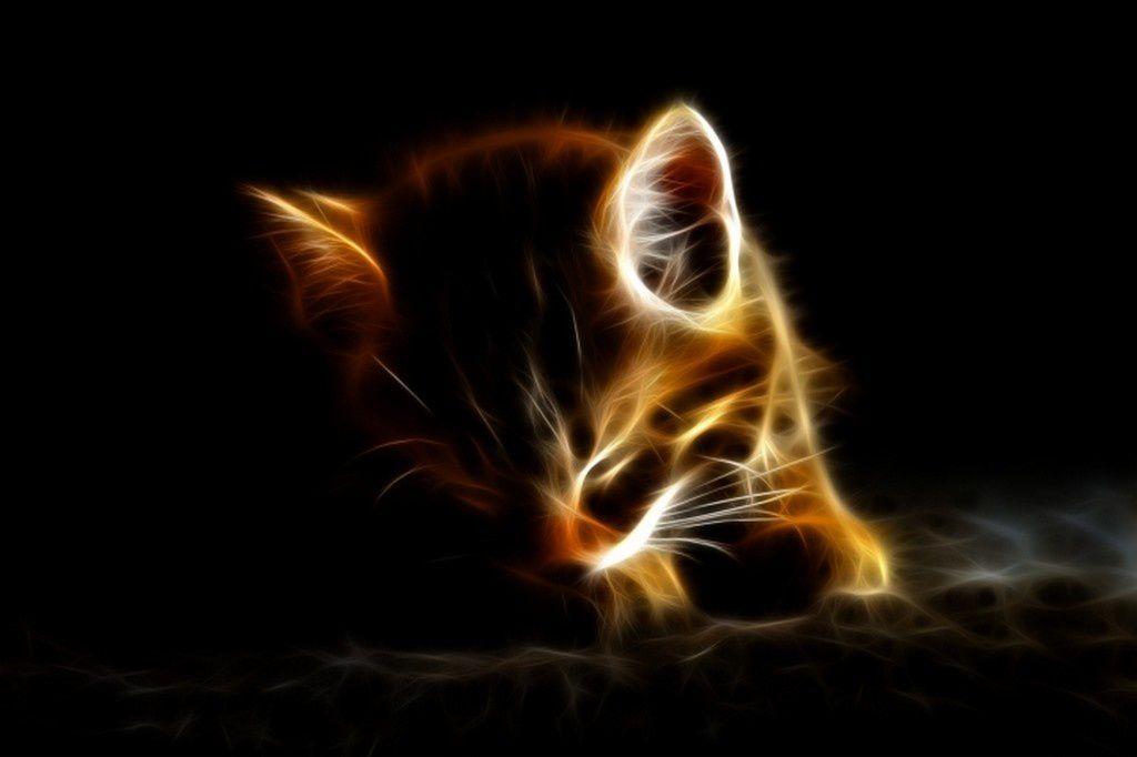 corto-le-chaton-720px-copie-1.jpg