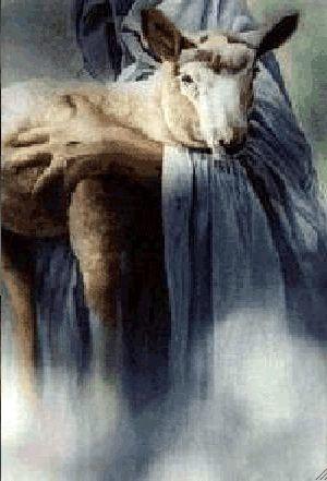 bras-jesus-agneau2.jpg