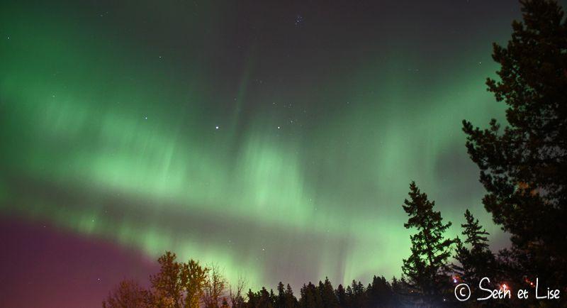 blog pvt canada edmonton top 5 alberta voyage photographie aurora aurore boreale