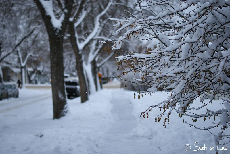 blog canada pvt voyage photo alberta tempete neige hiver