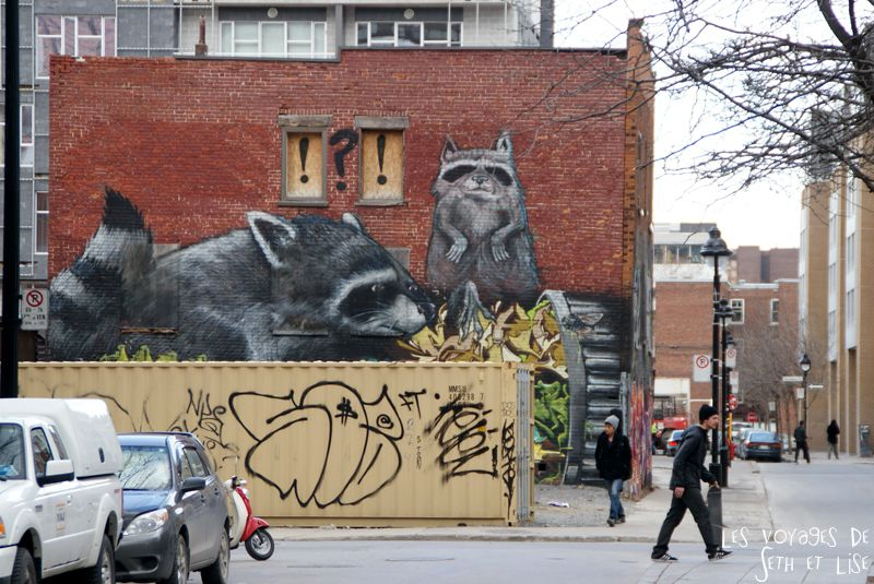 blog voyage canada pvt montreal street art raton laveur