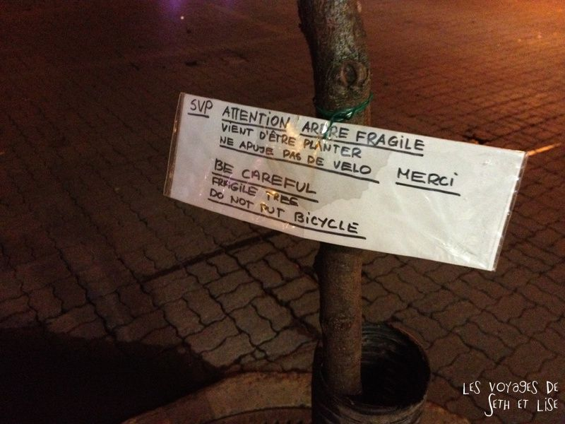 blog voyage canada montreal pvt photo insolite flyer affiche drole message streetart art cute tree arbre