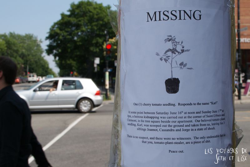 blog voyage canada montreal pvt photo insolite flyer affiche drole message streetart art missing kidnapping tomato