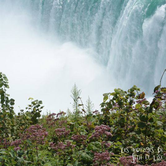 niagara falls chutes ontario canada pvt blog tourisme cascade nature couple vegetation