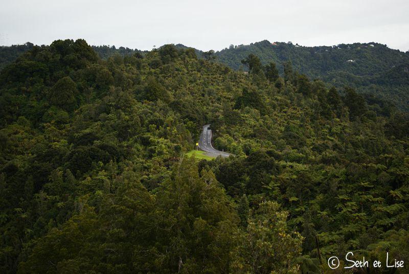 blog nouvelle zelande voyage photographie whv couple tour du monde Waitakere Ranges road trip route
