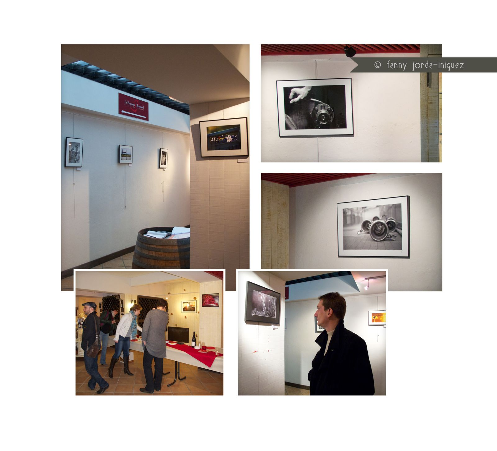 Expositions / Publications