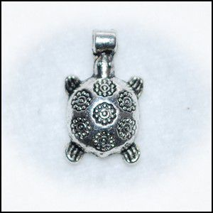 tortue-fleurs-gf.jpg