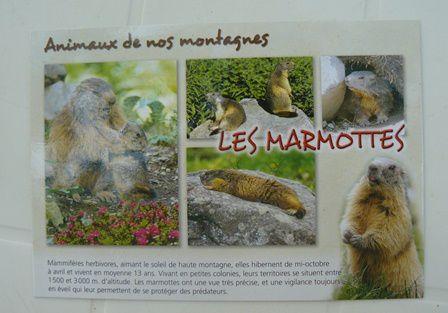 échange 6 carte Postale de guillette51 pour Manou60
